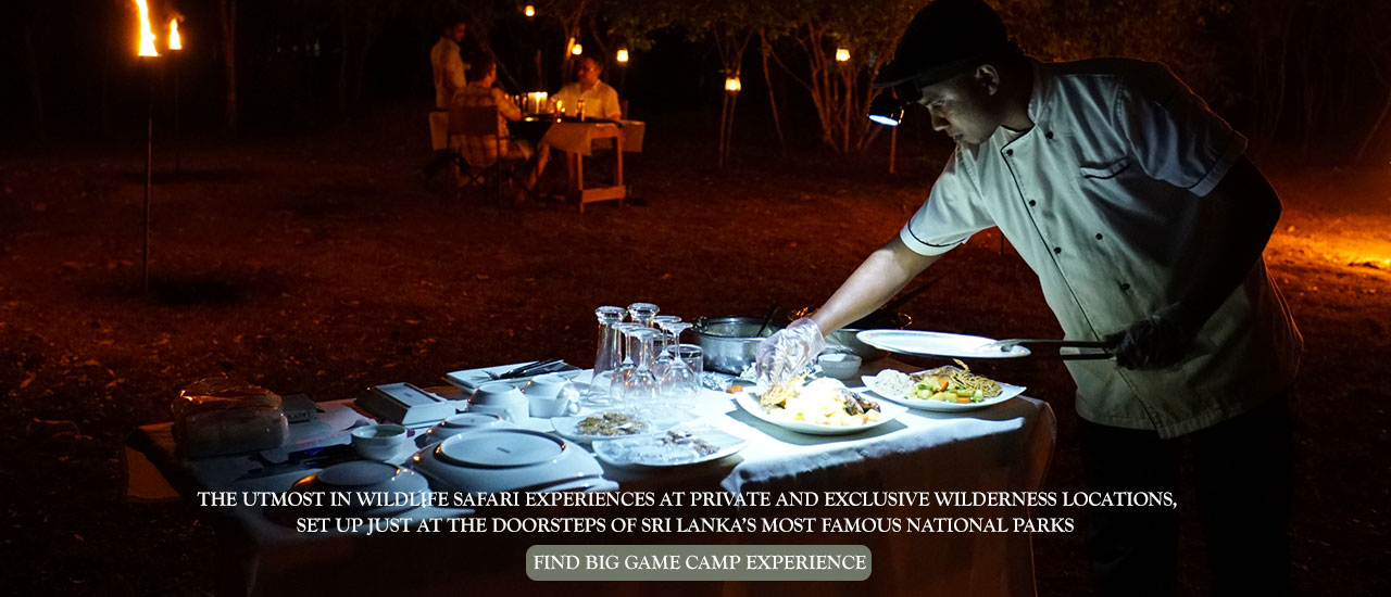 Big game safari Sri Lanka, Dining Experience at big game camp Udawalawe national park