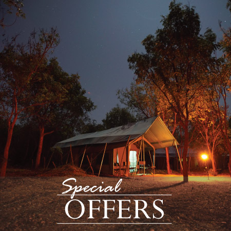Special Offers - Sri Lanka Big Game Camps - Promotions