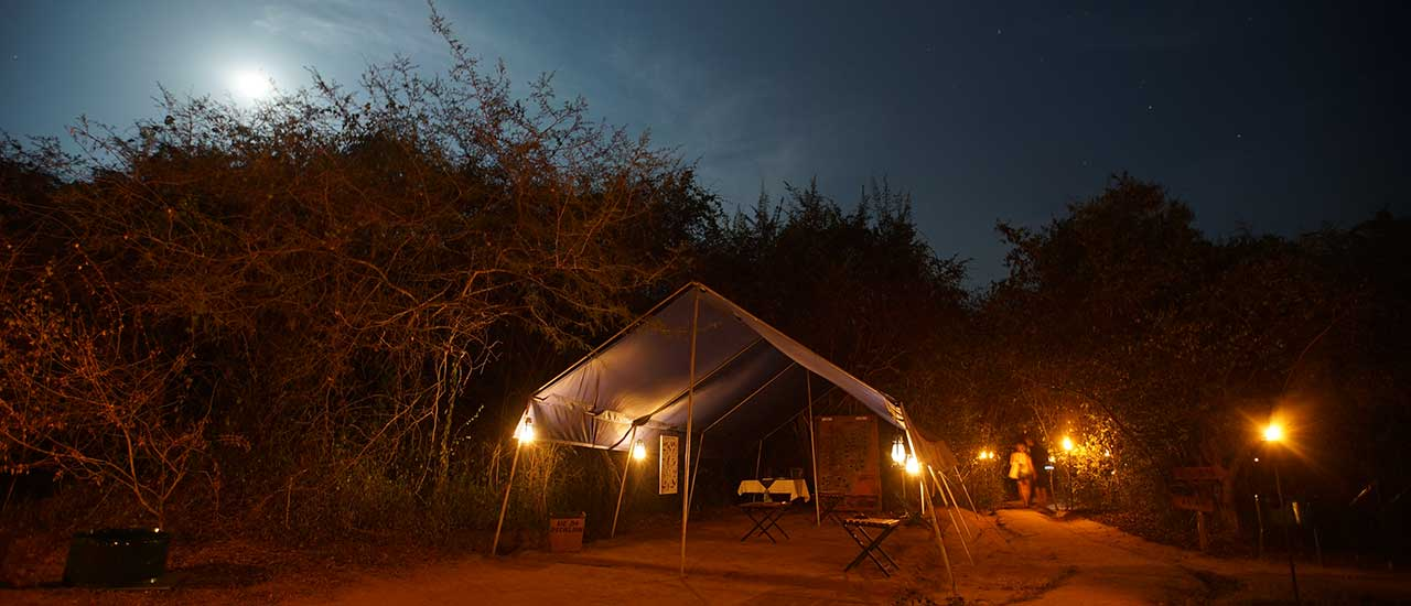 Camping in wilpattu, big game safari camps