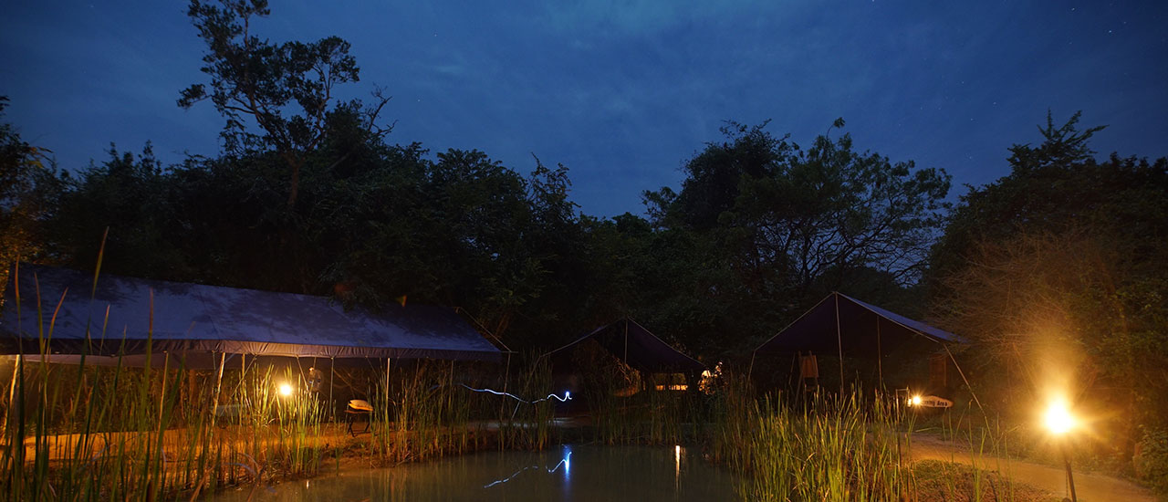 Biggame camp Yala National Park