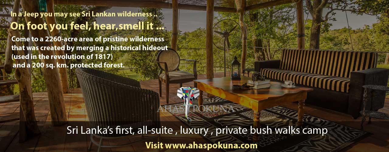 Ahaspokuna bush-walks camps Sri Lanka. First walking safari camping experience in Sri Lanka